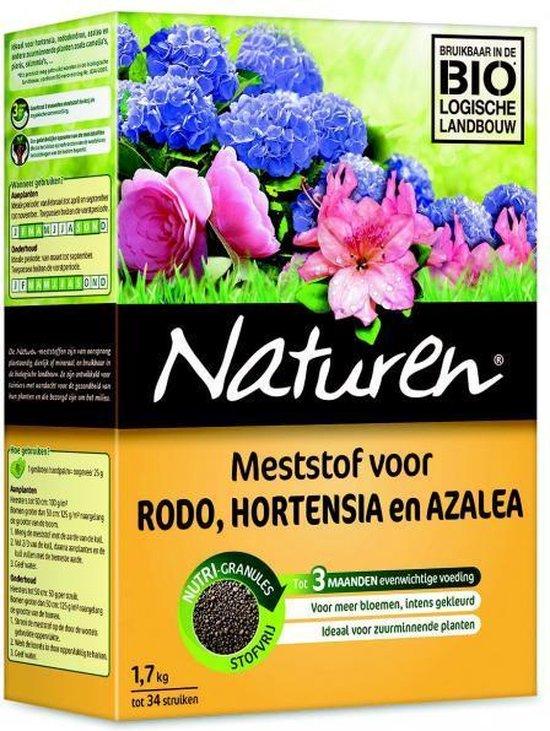 Naturen hortensia, rodo, azalea - 1,7 kg